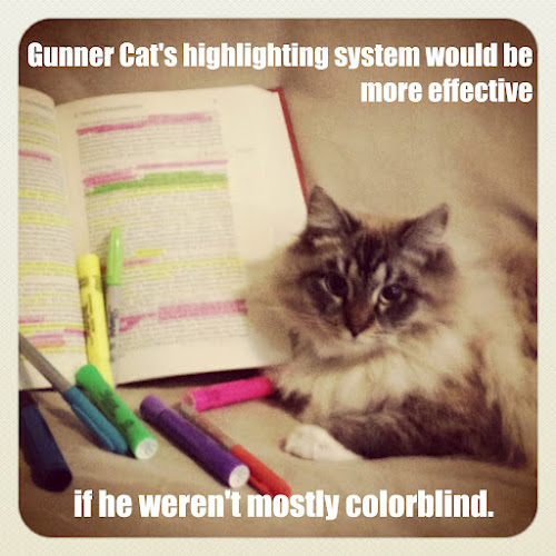 Gunner Cat's Highlighting System