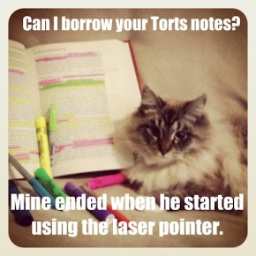 Can I Borrow Your Torts Notes?